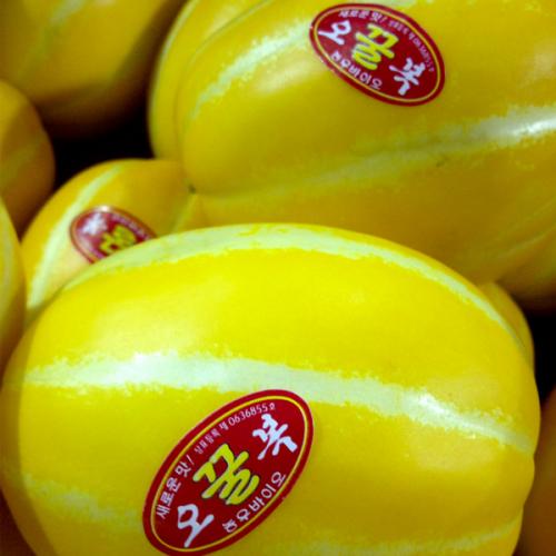 저농약 성주 꿀 참외 중과5kg (3,4번)