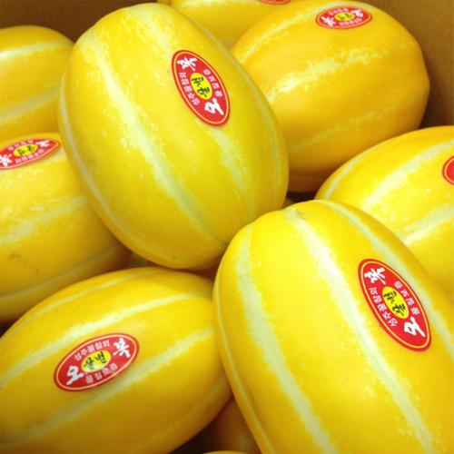 저농약 성주 꿀 참외 소과5kg (5,6번)
