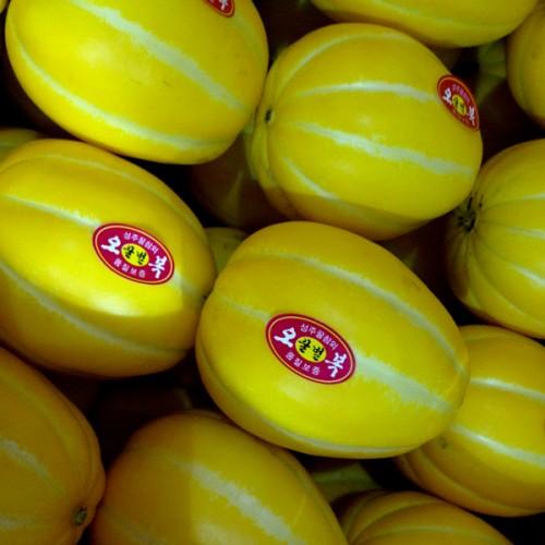 저농약 성주 꿀 참외 꼬마5kg (7-10번)