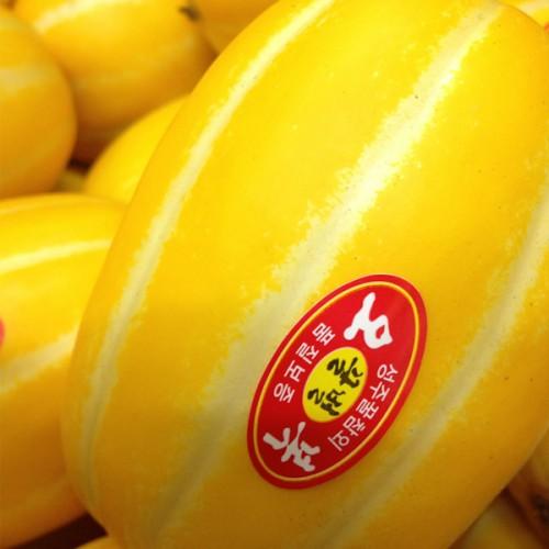 성주 꿀 참외 대과5kg (1,2번)