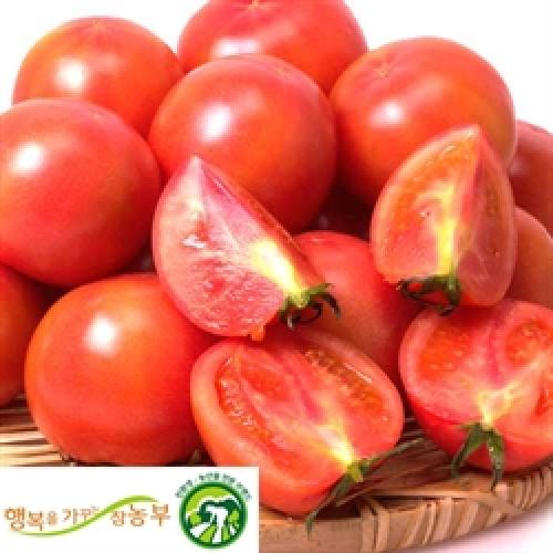 무농약 완숙토마토-주스용 5kg(1,4-5번)